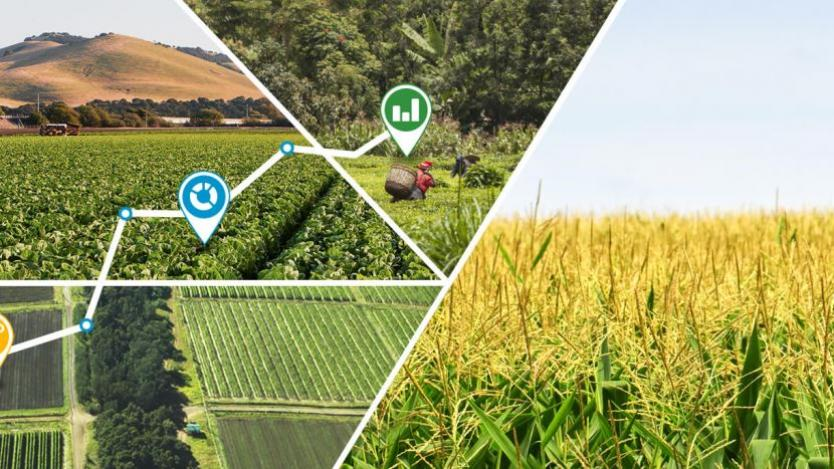 Е-земеделие